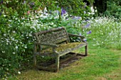 DESIGNER ALISON HENRY - PRIVATE GARDEN, COTSWOLDS: MEADOW AND GRASS PATH WITH OLD WOODEN BENCH / SEAT - ORNAMENT, ENGLISH GARDEN, CLASSIC, COUNTRY