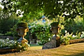 DESIGNER ALISON HENRY - PRIVATE GARDEN, COTSWOLDS: LAWN AND WALL WITH STONE URNS / CONTAINERS WITH HEBE - WHITE ICEBERG ROSES AND PERGOLA - ENGLISH GARDEN, CLASSIC, COUNTRY