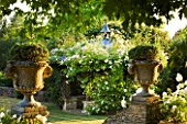 DESIGNER ALISON HENRY - PRIVATE GARDEN, COTSWOLDS: WALL WITH STONE URNS / CONTAINERS WITH HEBE - WHITE ICEBERG ROSES AND PERGOLA - ENGLISH GARDEN, CLASSIC, COUNTRY