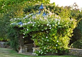 DESIGNER ALISON HENRY - PRIVATE GARDEN, COTSWOLDS: PERGOLA / SUMMER HOUSE, SUMMERHOUSE COVERED IN WHITE ROSES - ENGLISH GARDEN, CLASSIC, COUNTRY