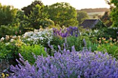 DESIGNER ALISON HENRY - PRIVATE GARDEN, COTSWOLDS: BLUE AND WHITE / PURPLE AND WHITE BORDER WITH NEPETA AND DELPHINIUMS - ENGLISH GARDEN, CLASSIC, COUNTRY