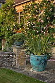DESIGNER ALISON HENRY, PRIVATE GARDEN, COTSWOLDS - STONE TERRACE / PATIO BESIDE THE HOUSE WITH BRONZE CONTAINER WITH CORDYLINE - COUNTRY, GARDEN, SUMMER, CLASSIC, ENGLISH