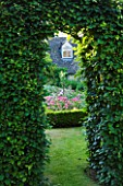 DESIGNER ALISON HENRY - PRIVATE GARDEN, COTSWOLDS: VIEW THROUGH HEDGE TO BOX EDGED BEDS WITH ROSES - ROSE GARDEN,  ENGLISH GARDEN, CLASSIC, COUNTRY