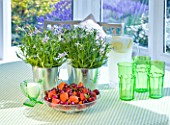 DESIGNER CLARE MATTHEWS: HOUSEPLANT - TABLE SETTING WITH GREEN GLASSES  BOWL OF FRUIT AND METAL CONTAINERS PLANTED WITH ISOTOMA AXILLARIS