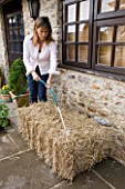 DESIGNER CLARE MATTHEWS - GROWING STRAWBERRIES AND NASTURTIUMS IN A STRAW BALE: WATER BALE WELL FOR FOUR OR FIVE DAYS