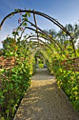 WHATLEY MANOR  WILTSHIRE: PATH UNDER SWEET PEA TUNNEL IN THE VEGETABLE/ KITCHEN GARDEN/ POTAGER