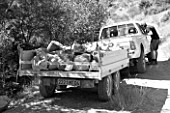 DIGNE LES BAINS  FRANCE: BLACK AND WHITE IMAGE OF TRUCK WITH TRAILER FILLED WITH ROCKS FOR ANDY GOLDSWORTHY