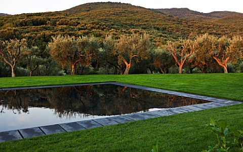 ARGENTARIO_GARDEN__ITALY__DESIGNER_PAOLO_PEJRONE___BLACK_SWIMMING_POOL_WITH_OLIVES