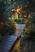 ARGENTARIO GARDEN  ITALY - DESIGNER: PAOLO PEJRONE - DAWN LIGHT ON BLACK WOODEN WALKWAY/ PATH