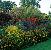 THE HOT BORDER AT THE PRIORY  HEREFORD & WORCESTER. RUDBECKIA  PENSTEMON GARNET  DAHLIA BISHOP OF LLANDAFF  ATRIPLEX A.