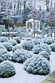 FORMAL TOWN GARDEN IN SNOW  OXFORD  WINTER: DESIGN BY LIZ NICHOLSON - GAZEBO/ ARBOUR WITH BALLS OF LAVENDER - LAVANDULA X INTERMEDIA GROSSO