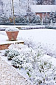 FORMAL TOWN GARDEN IN SNOW  OXFORD  WINTER: DESIGN BY LIZ NICHOLSON - TERRACE WITH ITALIAN TERRACOTTA CONTAINERSPLANTED WITH LAVANDULA AUGUSTIFOLIA HIDCOTE AND FORMAL LAWN