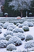 FORMAL TOWN GARDEN IN SNOW  OXFORD  WINTER: DESIGN BY LIZ NICHOLSON - BOX HEDGING AND BALLS OF LAVENDER - LAVANDULA X INTERMEDIA GROSSO