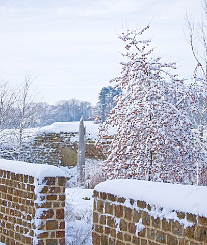 RICKYARD_BARN__NORTHAMPTONSHIRE_THE_GARDEN_IN_SNOW_WITH_WOODEN_NEEDLE__WALLS_AND_MALUS_RED_SENTINEL