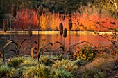 RHS GARDEN WISLEY  SURREY: VIEW ACROSS THE LAKE WITH WICKER SCULPTURE  CAREX ASHIMENSIS EVERGOLD  NADINA DOMESTICA FIRE POWER AND CORNUS IN BACKGROUND. WINTER  JANUARY