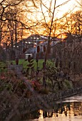RHS GARDEN WISLEY  SURREY:  EVENING VIEW OF SEVEN ACRES ACROSS THE LAKE TO THE GLASSHOUSES. WINTER  JANUARY