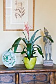 DESIGNER CLARE MATTHEWS - HOUSEPLANT PROJECT - GREEN CONTAINER PLANTED WITH THE BROMELIAD - AECHMEA
