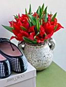 DESIGNER: KALLY ELLIS  LONDON: DISTRESSED POT HOLDING A BOUQUET OF ALADDIN SCARLET TULIPS NEXT TO SHOEBOXES IN BEDROOM