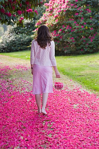 TREGOTHNAN__CORNWALL_GIRL_WALKING_WITH_TRUG_FILLED_WITH_FLOWERS_OF_RHODODENDRON_RUSSELLIANUM