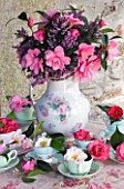 TREGOTHNAN  CORNWALL: CAMELLIAS IN VINTAGE TEA CUPS - STYLING BY JACKY HOBBS - HEATHER AND CAMELLIA INSPIRATION    TRICOLOR  LAURA BOSCAWEN  AKASHIGATA  MERCURY