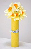 NARCISSUS EDWARD BUXTON WRAPPED IN YELLOW CARD - STYLING BY JACKY HOBBS