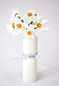 NARCISSUS ACTAEA  WRAPPED IN WHITE CARD - STYLING BY JACKY HOBBS