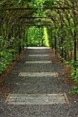 LE JARDIN DALCHIMISTE  PROVENCE  FRANCE: DESAIGNERS ARNAUD MAURIERES AND ERIC OSSART - BLACK GRAVEL PATH THROUGH HORNBEAM TUNNEL IN THE BLACK SQUARE