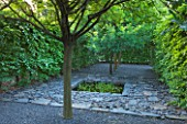 LE JARDIN DALCHIMISTE  PROVENCE  FRANCE: DESAIGNERS ARNAUD MAURIERES AND ERIC OSSART - BLACK SLATE PATH AND BLACK REFLECTING POOL THROUGH HORNBEAM TUNNEL IN THE BLACK SQUARE