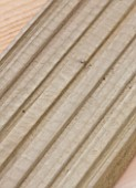 DESIGNER CLARE MATTHEWS - DECKING PROJECT - CLOSE UP OF A DECK BOARD SHOWING GROOVES