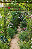 ANDRE EVE GARDEN  FRANCE - ROSE COVERED PERGOLA AND PATH - ROSES - CHEVY CHASE  MOZART   GRUSS AN AACHEN AND OFFRANVILLE