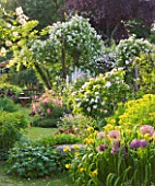 ANDRE EVE GARDEN  FRANCE - ALLIUM CHRISTOPHII  IRIS ROY DAVIDSON  BEHIND IS ROSE NATALIE AND BELLE HELENE