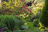 ANDRE EVE GARDEN  FRANCE - GRASS PATH SURROUNDED BY ROSA CERISE BOUQUET