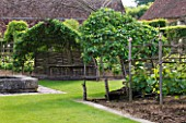 PRIEURE NOTRE-DAME DORSAN  FRANCE: THE CLOISTER - WOVEN WOODEN SEATS WITH QUINCE TREES TRAINED INTO HOOD-SHAPED ARBOURS