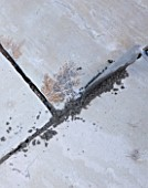 DESIGNER: CLARE MATTHEWS  DEVON - PAVING PROJECT - DETAIL OF PAVING SHOWING MORTAR APPLIED TO CRACKS WITH A TROWEL