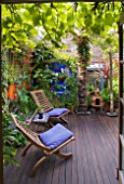 KARLA NEWELL GARDEN  BRIGHTON: WOODEN SEATS ON THE DECKED TERRACE OUTSIDE THE BACK DOOR OF THE HOUSE  WITH TRACHYCARPUS   ORANGE AND BLUE WALLS
