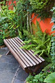 KARLA NEWELL GARDEN  BRIGHTON: SMALL TOWN GARDEN - COURTYARD WITH WOODEN BENCH  ORANGE PAINTED WALL AND FERNS
