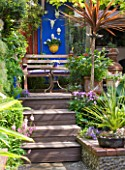 KARLA NEWELL GARDEN  BRIGHTON: SMALL TOWN GARDEN - BLUE RENDERED WALL   WOODEN STEPS LEADING UP TO PATIO