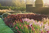 WATERPERRY GARDENS  OXFORDSHIRE: TRIAL BEDS AT DAWN WITH PENSTEMONS AND SEDUMS