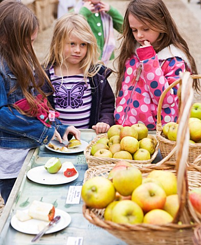 APPLE_TASTING__WATERPERRY_APPLE_DAY_EVENT__WATERPERRY_GARDENS__OXFORDSHIRE