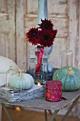 JACKY HOBBS HOUSE  LONDON: DECORATIVE AUTUMN DISPLAY OF QUEENSLAND BLUE PUMPKINS WITH VASE OF RED/BLACK DAHLIA BLACK WIZARD