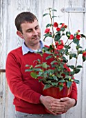 TREHANE NURSERY  DORSET: DAVID TREHANE HOLDS A RED CONTAINER OF CAMELLIA BOBS TINSIE