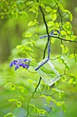 FISHING COTTAGE  KNEBWORTH PARK: STYLING BY JACKY HOBBS: BLUEBELLS IN A GLASS JAR TIED TO BEECH TREE - SPRING