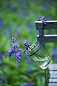 FISHING COTTAGE  KNEBWORTH PARK: STYLING BY JACKY HOBBS: BLUEBELLS IN A GLASS JAR TIED TO A BENCH IN WOODLAND - SPRING