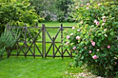 LES JARDINS DE ROQUELIN  LOIRE VALLEY  FRANCE: LAWN AND A DECORATIVE WOODEN FENCE BY STEPHANE CASSINE - BESIDE IS ROSE CONSTANCE SPRY