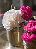 LES JARDINS DE ROQUELIN  LOIRE VALLEY  FRANCE: VINTAGE SILVERED CUPS OF ROSES: ROSA GRUSS AN AACHEN  ROSA BELLE DE REMALARD