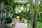 THE GLASS HOUSE  PETERSHAM. ARCHITECTS TERRY FARRELL PARTNERS. GARDEN DESIGN BY SALLIS CHANDLER: PERGOLA WITH WOODEN BENCH WITH FIG  BOX BALLS IN CONTAINERS AND TRACHYCARPUS