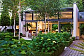 THE GLASS HOUSE  PETERSHAM. ARCHITECTS TERRY FARRELL PARTNERS. GARDEN DESIGN BY SALLIS CHANDLER: NIGHT VIEW OF LAWN  GLASS PAVILION  BETULA JACQUEMONTII AND HYDRANGEA ANNABELLE