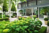 THE GLASS HOUSE  PETERSHAM. ARCHITECTS TERRY FARRELL PARTNERS. GARDEN DESIGN BY SALLIS CHANDLER: GLASS PAVILION  BETULA UTILIS JACQUEMONTII  HYDRANGEA ANNABELLE