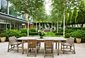 THE GLASS HOUSE  PETERSHAM. ARCHITECTS TERRY FARRELL PARTNERS. GARDEN DESIGN BY SALLIS CHANDLER: LIMESTONE TERRACE/ PATIO WITH DINING TABLE AND CHAIRS  BETULA JACQUEMONTII AND LAWN