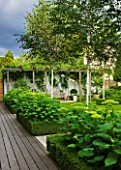 THE GLASS HOUSE  PETERSHAM. ARCHITECTS TERRY FARRELL PARTNERS. GARDEN DESIGN BY SALLIS CHANDLER: WOODEN PERGOLA  BETULA JACQUEMONTII  BOX EDGED BEDS WITH HYDRANGEA ANNABELLE